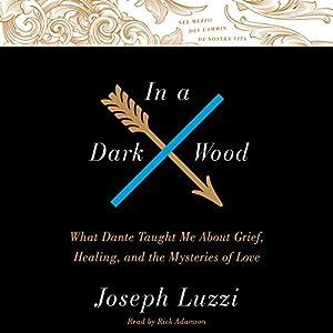 In a Dark Wood Audiobook