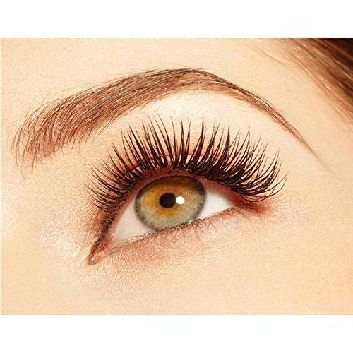 6e2a3c46b01 BEYELIAN Beauty Flat Eyelash Extensions Premium Silk Ellipse Flat Lash  Extension Classic Setting Natural Soft Lightweight