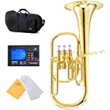 Cecilio Lacquered Eb Alto Horn and Tuner, Case - AH-280+92D