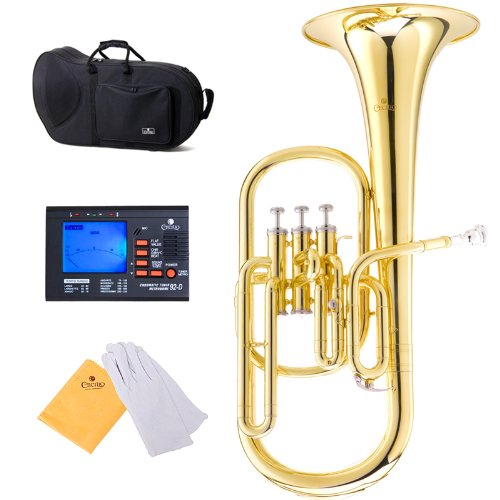 Cecilio 2Series AH-280 Lacquer Eb Alto Horn with Stainless Steel Valves, Gold by Cecilio