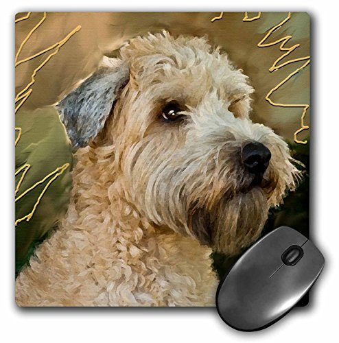 3dRose LLC 8 x 8 x 0.25 Inches Mouse Pad, Soft Coated Wheaten Terrier Portrait (mp_4808_1)