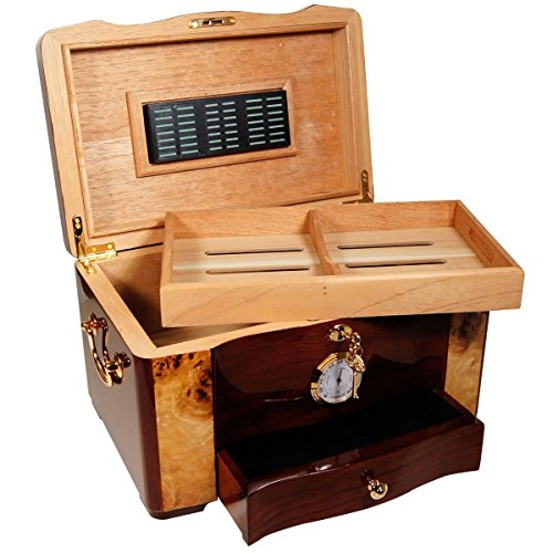Finish High Gloss Humidor (The Gothic - Cigar Humidor - High Gloss Piano Finish, Birdseye Maple Burl Top And Inlay (15