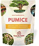 Casa De Amor Pumice 2 Liter Organic for Horticulture Soil Amendment for Bonsai and Succulents