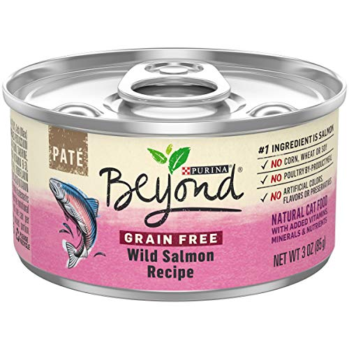 Purina Beyond Grain Free, Natural Pate Wet Cat Food; Grain Free Wild Salmon Recipe - 3 oz. Can (Pack of 12)