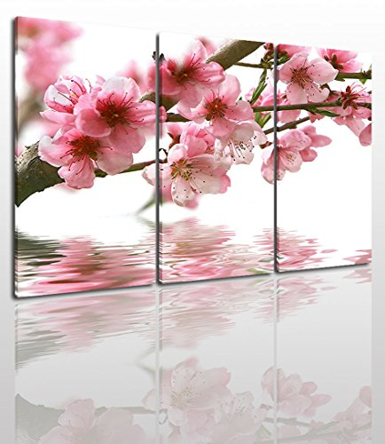 - Peach Blossom Canvas Wall Art Painting Modern Design Picture for Home Office Decor - 3 Pieces Water Flower Framed On Wooden Frame Image Pictures Photo Artwork Decoration Ready to Hang