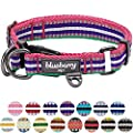 Blueberry Pet 15 Colors 3m Reflective Multi Colored Stripe Adjustable Dog Collar Pink Emerald And Orchid Large Neck 18 26