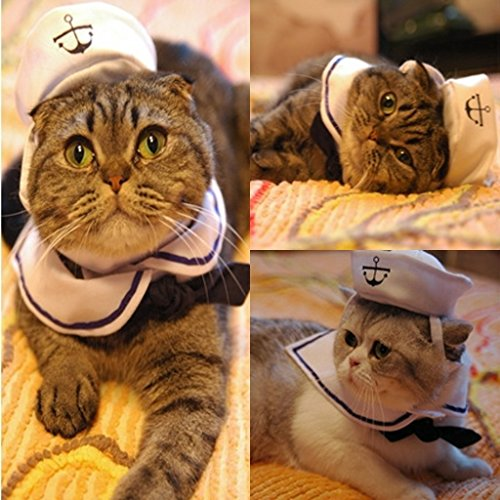 Amazon.com : Misula Cat Small Dog Sailor Adjustable Outfit Costume Hat & Cape Stylish Dog Cat Hat Halloween Costume Cosplay Costume : Pet Supplies