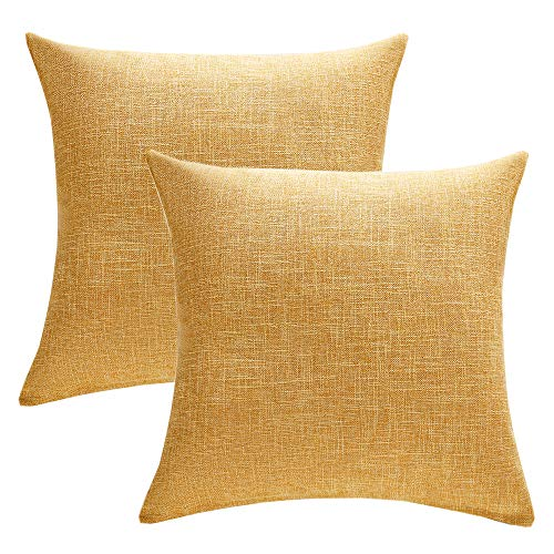 Top 10 best couch pillows set of 2 gold for 2020