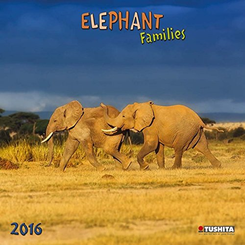 Elephant Families 2016: Kalender 2016 (What a Wonderful World)