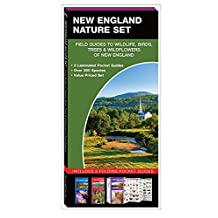 New England Nature Set: Field Guides to Wildlife, Birds, Trees & Wild Flowers of New England