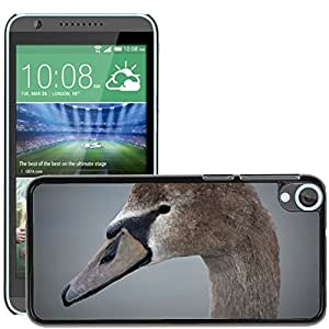 Super Stella Slim PC Hard Case Cover Skin Armor Shell Protection // M00145578 Swan Beak Animal Nature Whooper Swan // HTC Desire 820
