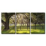 wall26 - 3 Piece Canvas Wall Art - Large Oak Tree Branch with Farm Fence in the Rural Countryside Looking Serene - Modern Home Decor Stretched and Framed Ready to Hang - 16''x24''x3 Panels