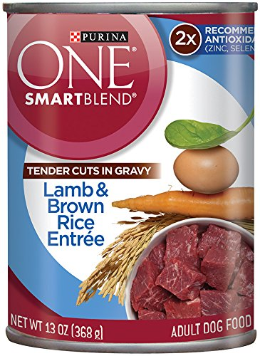 Purina ONE SmartBlend Wet Dog Food, Tender Cuts in Gravy Lamb & Brown Rice Entree, 13-Ounce Can, Pack of (Purina One Rice)