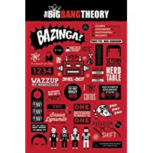 """The Big Bang Theory Poster Info graphic (24""""x36"""")"""