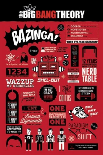 The Big Bang Theory - TV Show Poster / Print Infographic - Quotes, Facts