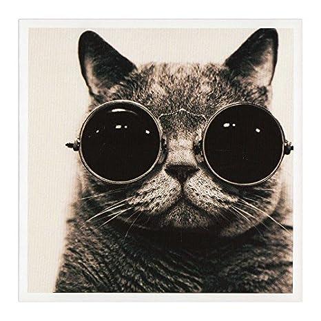 Hep Gatto Auguri Di Compleanno Di Gatto Con Occhiali Da Sole