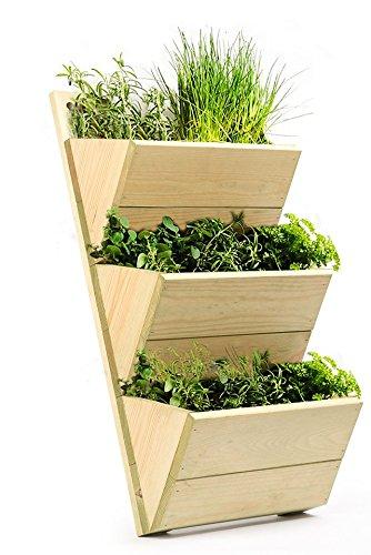 3 ripiani, in legno di alta qualità, da parete, motivo erbe ...