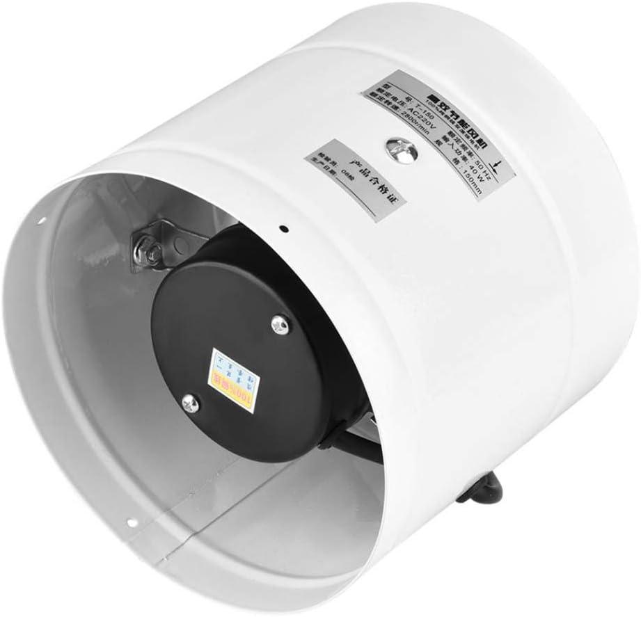 EtexFan Axial Rohrl/üfter Zuluft//Abluft Rohrventilator L/üfter f/ür Dauerbetrieb Zelte 50W 172mm Energieverbrauch Rohrventilator mit geringem Ger/äuschpegel F/ür Dachb/öden L/üftungs/öffnungen