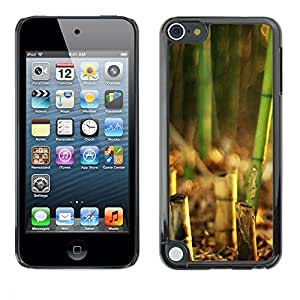 LECELL -- Funda protectora / Cubierta / Piel For Apple iPod Touch 5 -- Bamboo Plant --
