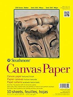 d901100ef Amazon.com  Strathmore 300 Series Canvas Pad