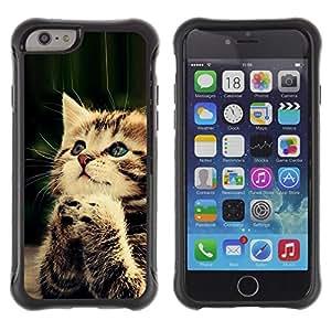 Suave TPU GEL Carcasa Funda Silicona Blando Estuche Caso de protección (para) Apple Iphone 6 PLUS 5.5 / CECELL Phone case / / Praying Cute Kitten Baby Paw Furry /