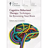 Cognitive Behavioral Therapy: Techniques for Retraining Your Brain -  DVD