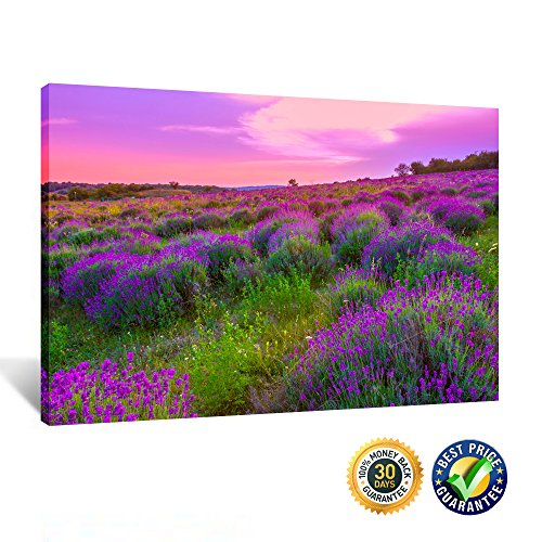 Creative Art – Gallery Wrap Canvas Print Purple Lavender Scenery Canvas Wall Art for Home Decoration Romantic Lanvender Field Wall Decor Ready to Hang 16 x24 40x60cm