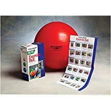 "Thera-Band Inflatable Exercise Ball - Pro Series SCP - Red - 22"" (55 cm)"