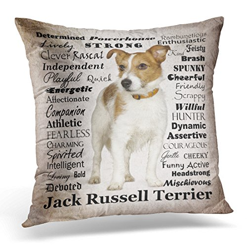 TORASS Throw Pillow Cover Terrier Jack Russell Breed Dog Pet Animal Personality Decorative Pillow Case Home Decor Square 20 x 20 Inch Pillowcase