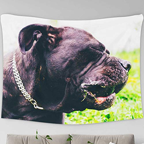 Loussiesd Dog Lover Tapestry American Pit Bull Terrier Wall Carpet Black Dog Head 3D Print Tapestry Table Cover Bedspread Room Decoration Beach Towel,Small 51.2 x 59.1 Inches