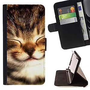 Momo Phone Case / Flip Funda de Cuero Case Cover - Maine Coon gatito Peque?o bebé Selkirk; - LG G4c Curve H522Y (G4 MINI), NOT FOR LG G4