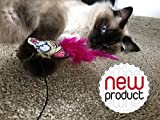 Amazing Mouse Teaser Toy For Pets By 7ProductGroup...