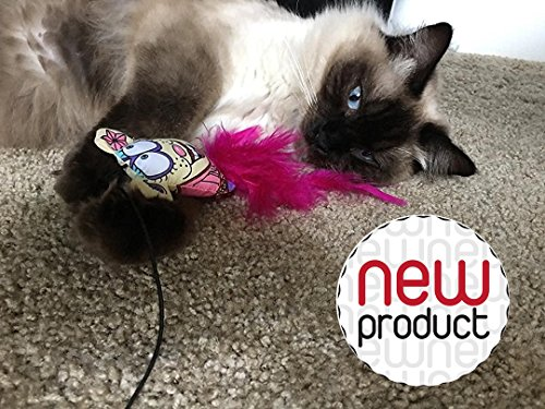 Amazing Mouse Teaser Toy For Pets By 7ProductGroup: Ultimate