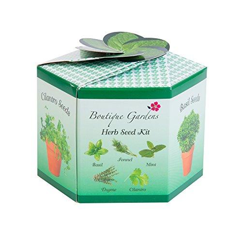 Herb Garden Mint (Herb Garden Starter Kit - 5 Seed Kit With Everything A Gardener Needs - The Ultimate Gardening Gift Set)