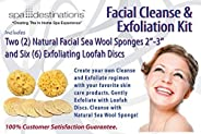 Sea Sponge and Loofah Kit (2) Natural Facial Sea Wool Sponges 2