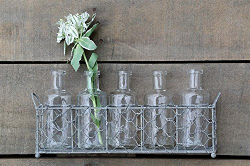 Amazon Com Chicken Wire Holder W 5 Clear Glass Bottles Flower Vases Country Home D Home Amp Kitchen