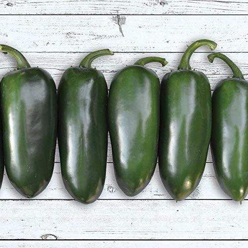 Pepper Hot Hybrid (Emerald Fire F1 Hybrid Hot Pepper Seeds (20 Seed Pack))