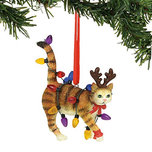 (Department 56 Gary Patterson Cat in Lights Hanging Ornament, 2.75