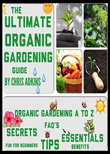 It's Time to Bring Back Gardening!