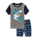 Fribro Boys Short Pajamas Toddler Kids Sleepwear Summer PJS Clothes Shirts (Blue, 4T)