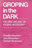 Groping in the Dark : The First Decade of Global Modelling, Meadows, Donella H., 0471100277