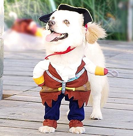 per cane e gatto Costume da pirata con cappello
