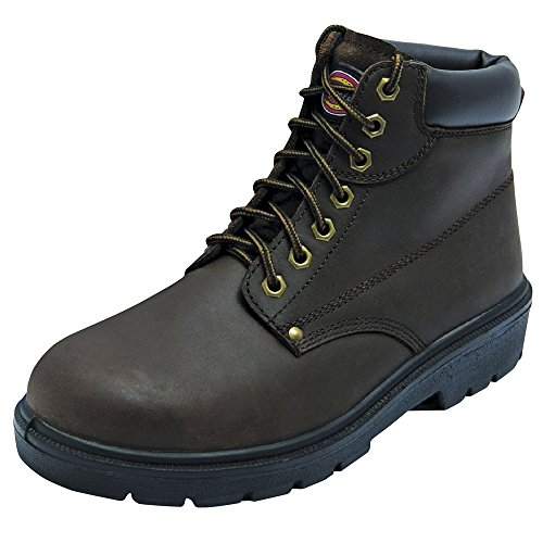 Dickies Antrim super safety boot (FA23333) Brown EbIBkHC