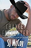 Chance Encounter (A Chance and a Hope) (Volume 1)