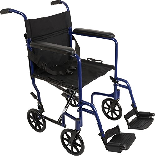 ProBasics Aluminum Transport Wheelchair - 19