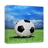 Soccer Ball On Green Grass Streched Canvas Wrap Frame Print Wall Décor - Full Border, 28''x28''
