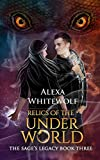Dragons Teen & Young Adult Country & Ethnic Fairy Tales & Folklore eBooks