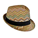 Bohemian Summer Straw Fedora Hat for Women, Cute Chevron Zig Zag Striped, One Size