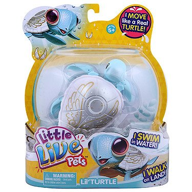 Little Live Pets Turtle - Pearly The Angel Turtle (Dispatched From UK)