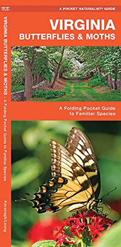 Virginia Butterflies Moths A Folding Pocket Guide To Familiar Species Pocket Naturalist Guide Series Epub
